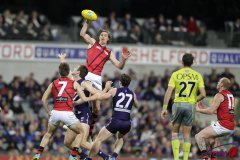 Daniher Up High