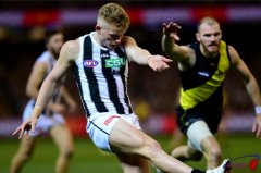 Treloar and McIntosh