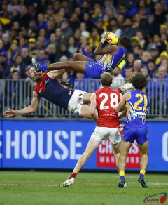 AFL West Coast v Melbourne, Round 8, Optus Stadium.