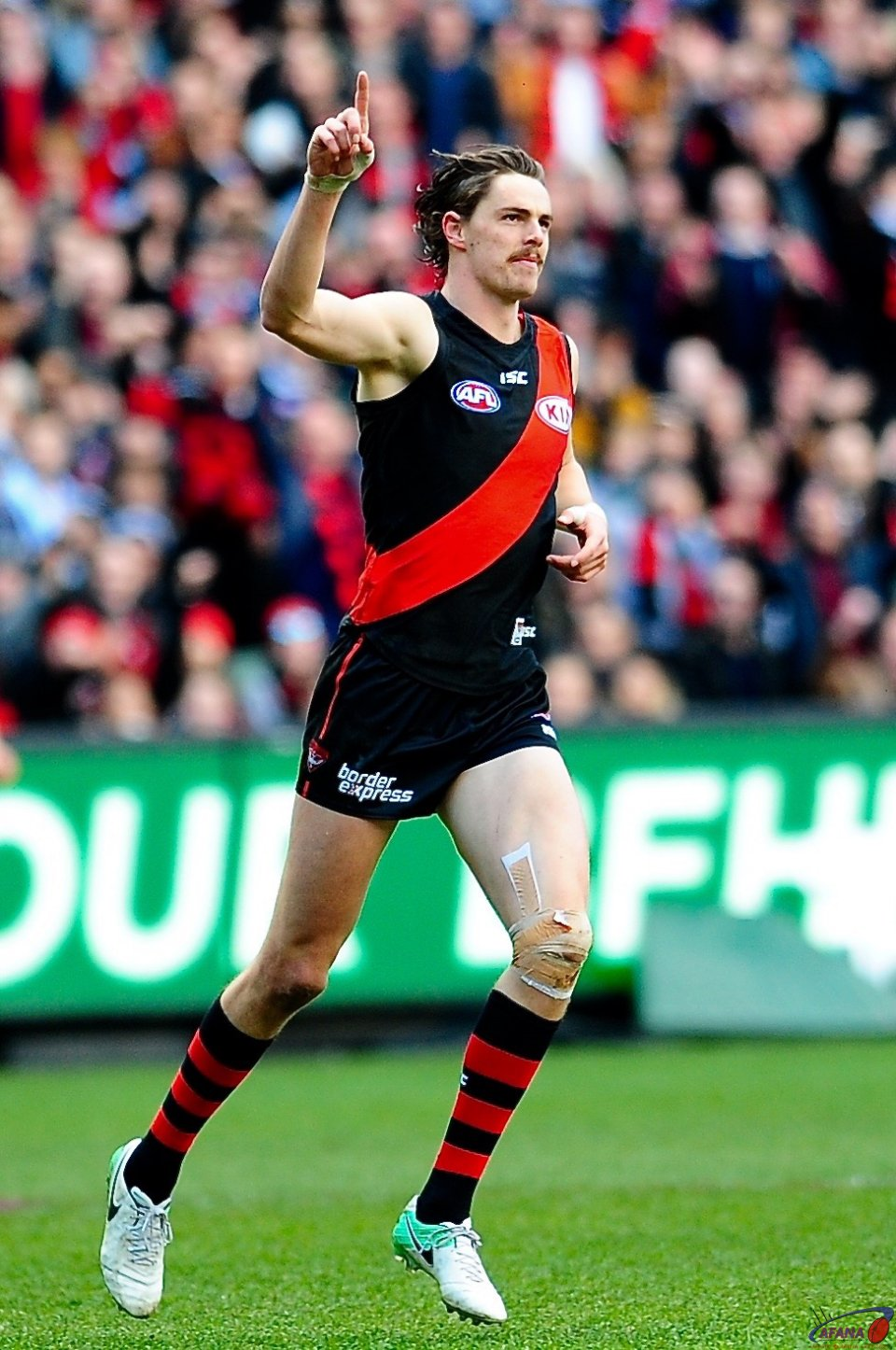 Daniher leads the Coleman with this goal