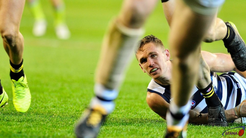 Selwood agonising look as the game slips away from the Cats