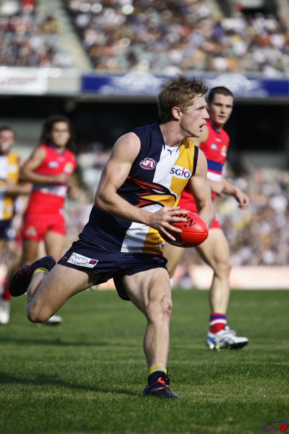 Selwood In Action