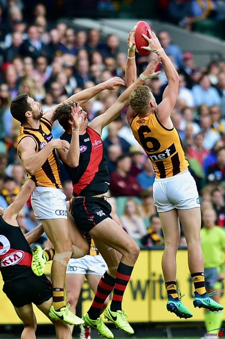James Sicily takes the mark in front of Joe Daniher playing his 100th game