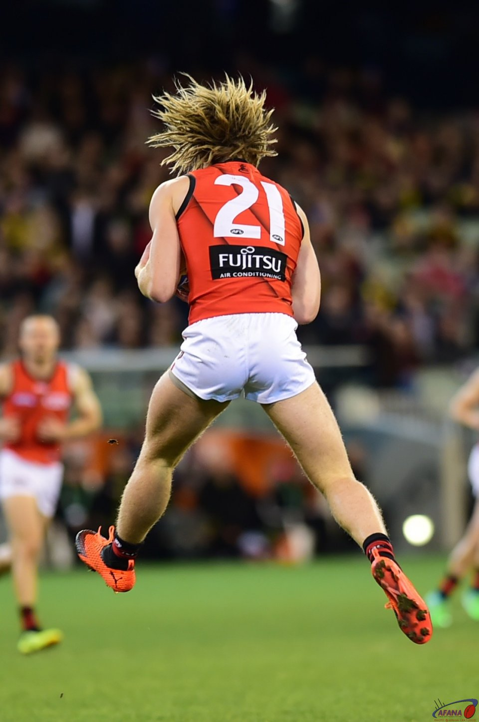 Dyson Heppell