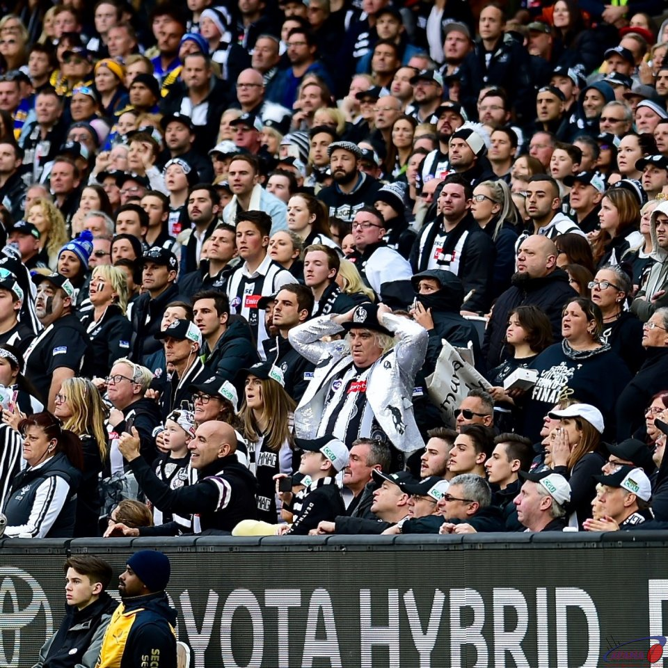 Collingwood cheersquad
