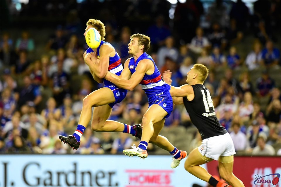 Dogs clash in forward fifty