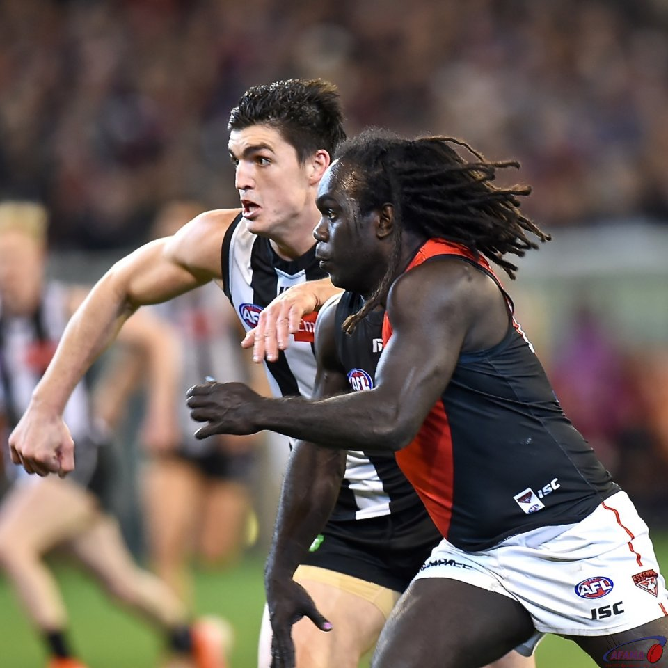 Maynard and McDonald-Tipungwuti
