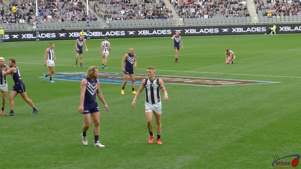 David Mundy and Adam Treloar