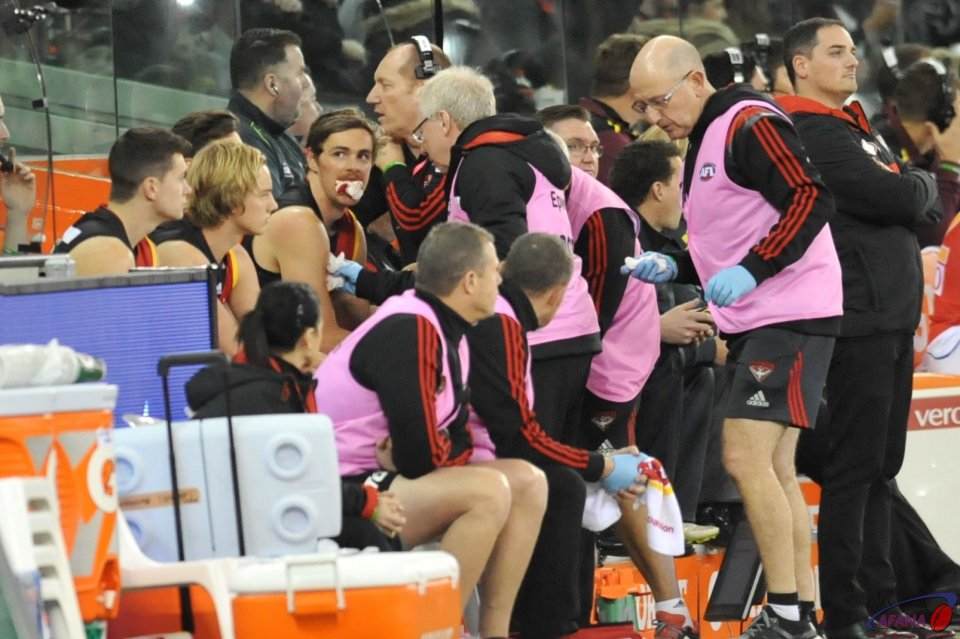 Joe Daniher gets medical attention from Doc Reid