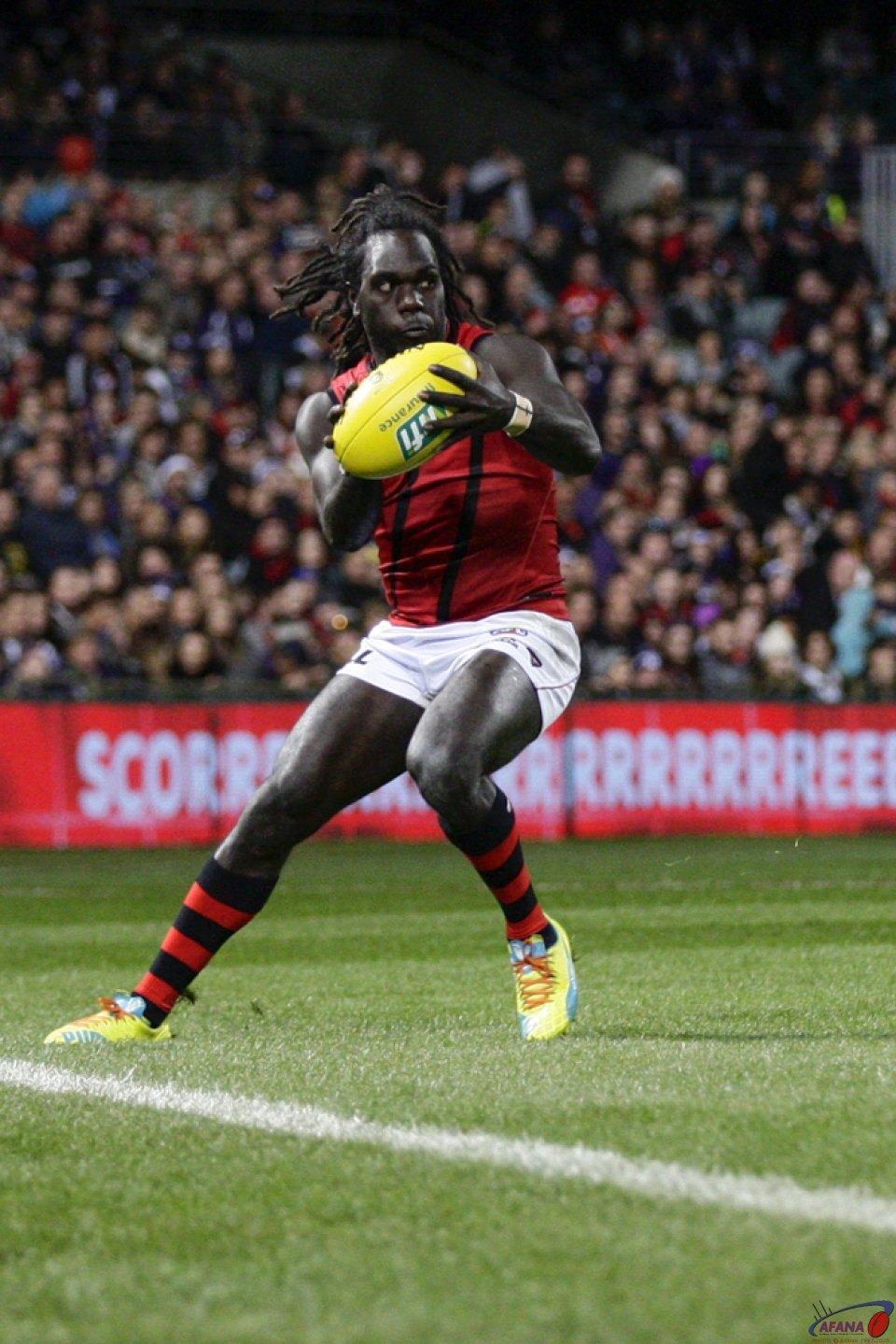 Tipungwuti Collects