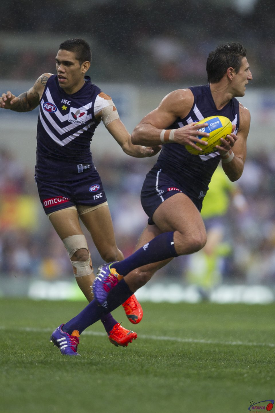 Pavlich Moves