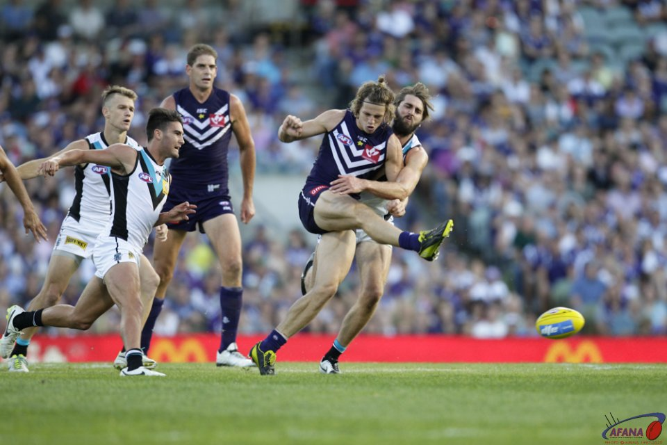 Fyfe Smothered