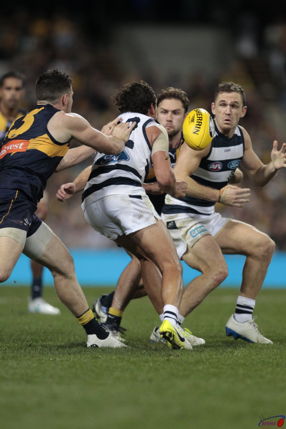 Motlop To Selwood
