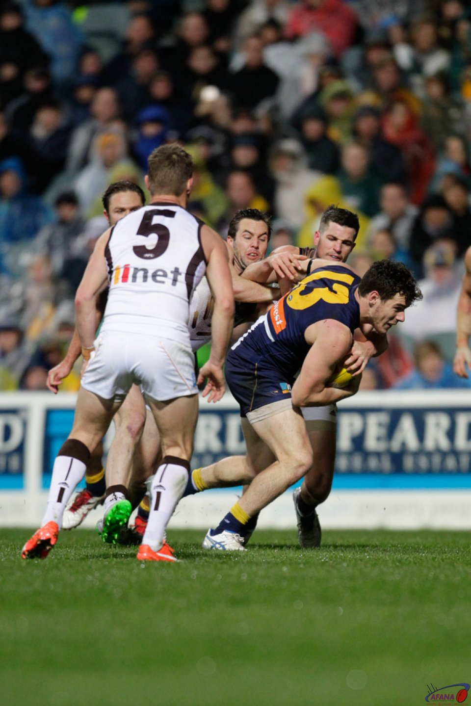 Shuey Busts Out