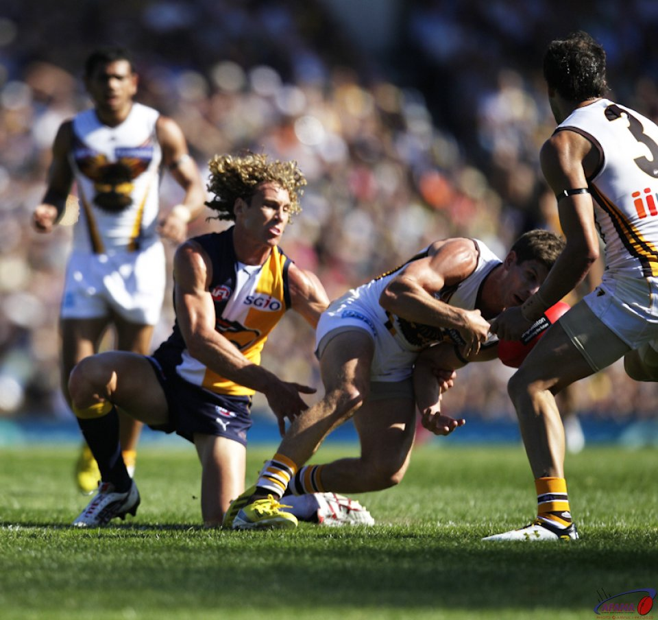 Priddis Tackles