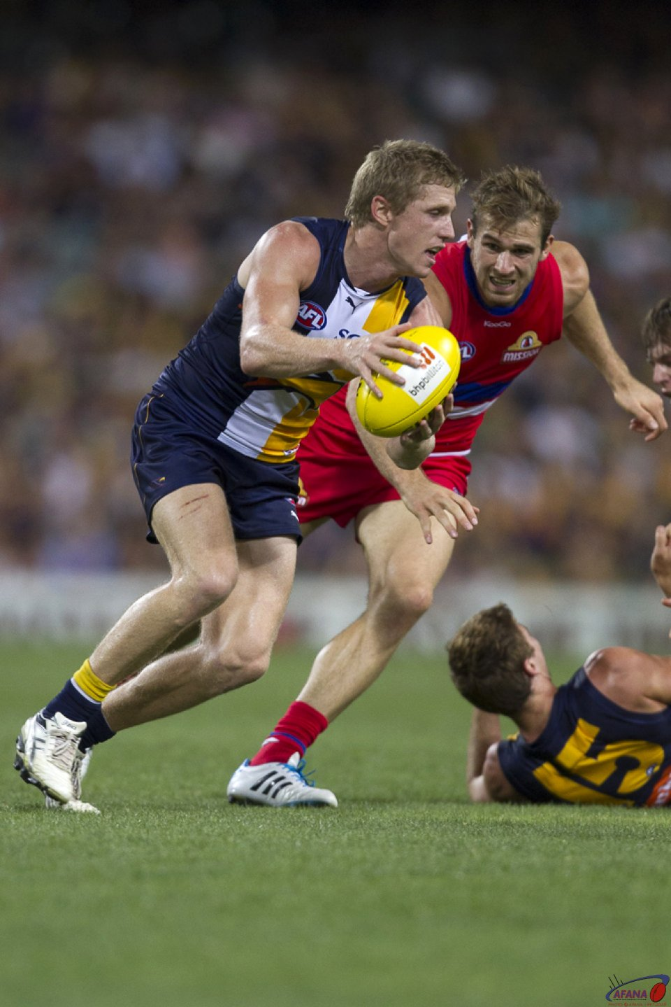 Selwood Clears