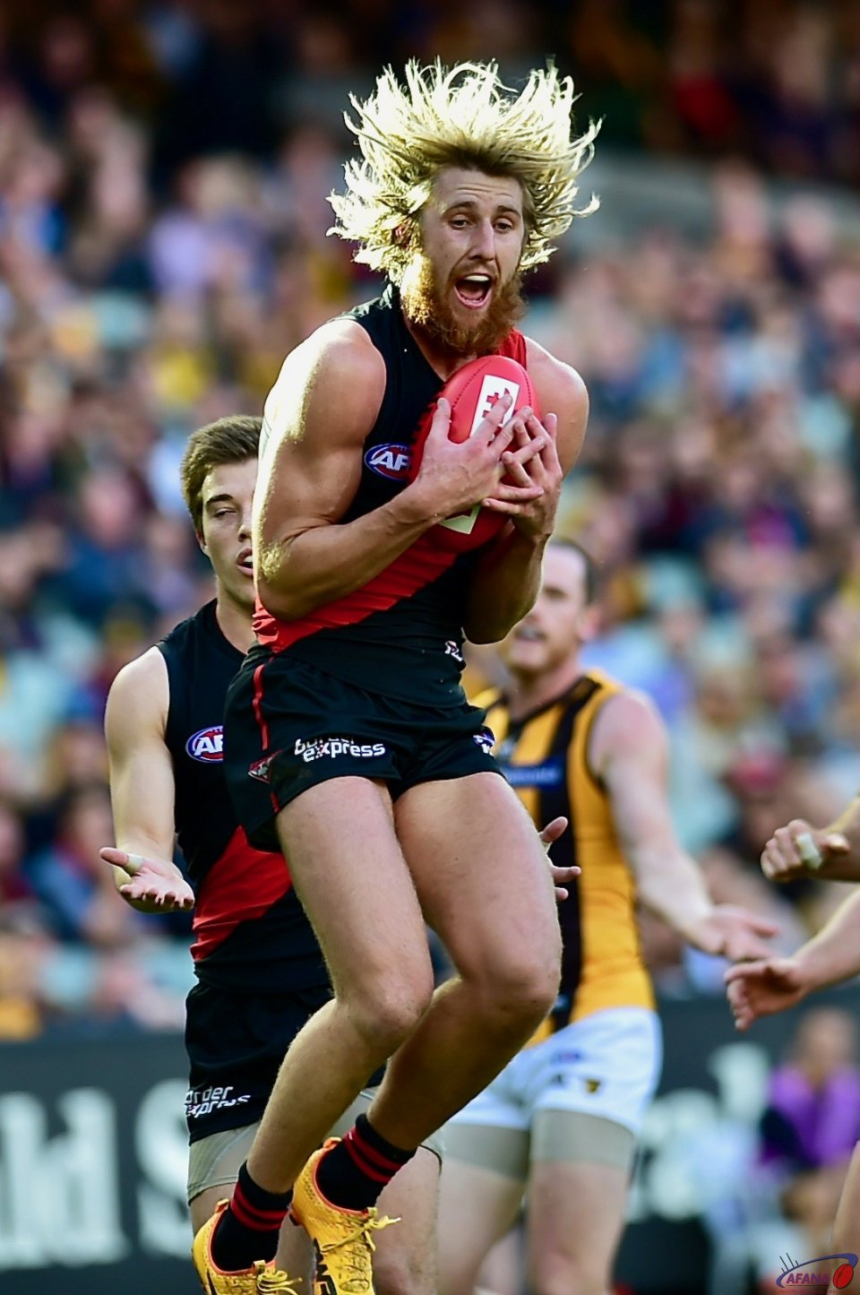 Bomber captain Dyson Heppell takes an intercept mark.