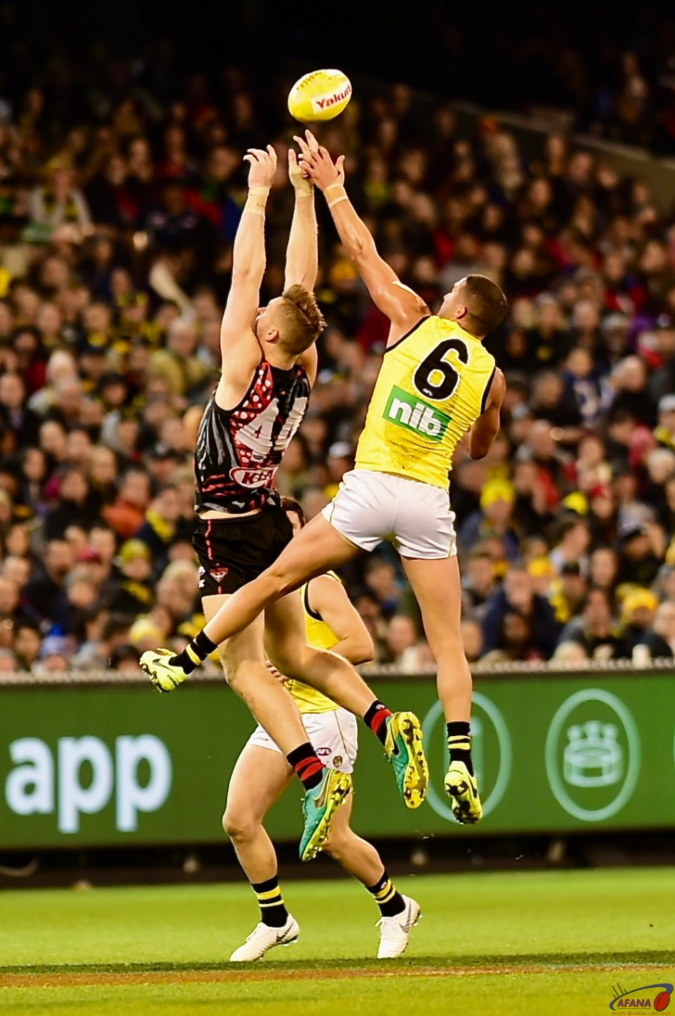 McKernan and Grigg contest.