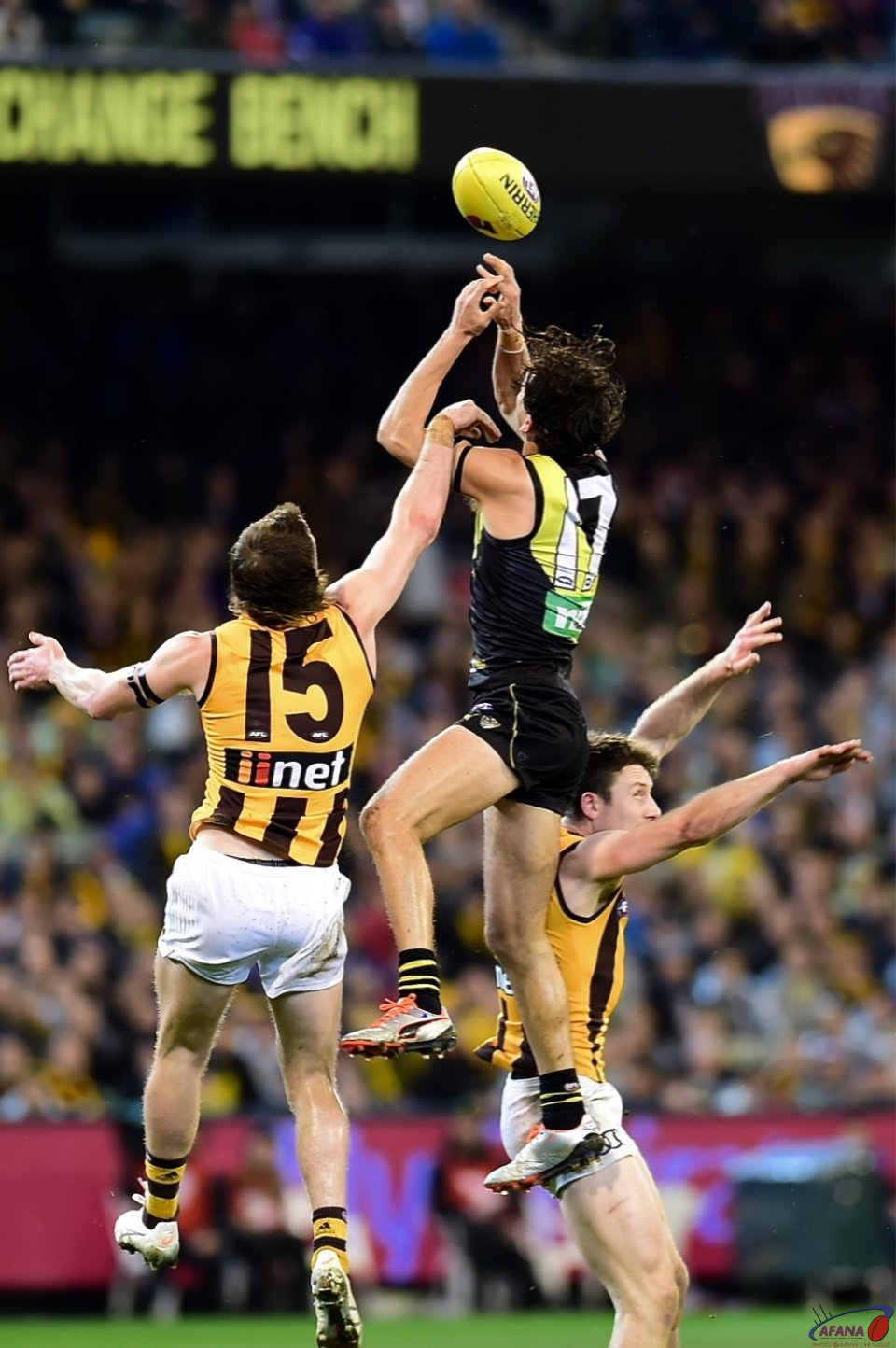 Daniel Rioli and Blake Hardwick contest