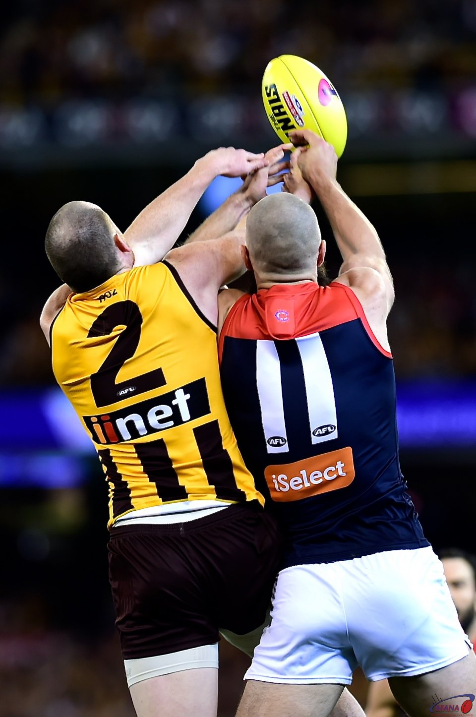 Jarryd Roughead and Max Gawn