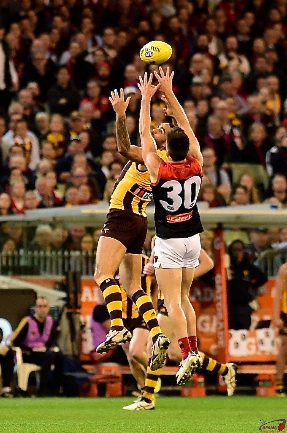 Alex Neal-Bullen and Shaun Burgoyne