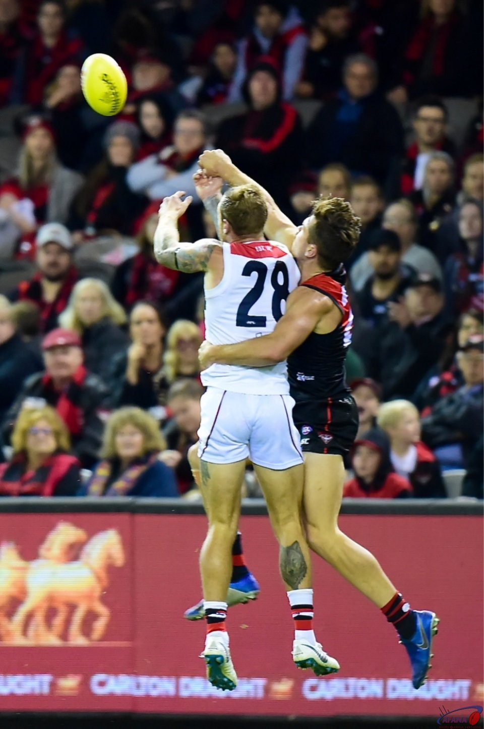 Mitch Brown and Tim Membrey
