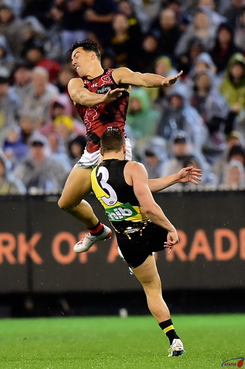 Dion Prestia and Dylan Shiel